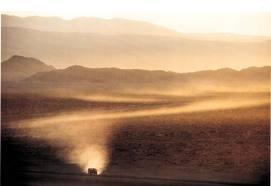 Desert Iwin
