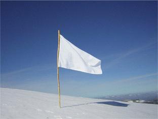 Whiteflagsmall